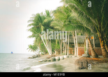 Palmtrees on the beach in a small village on the Lombok island, Indonesia, Asia - Stock Photo