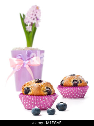 Blueberry muffins and hyacinth in a flower pot isolated - Stock Photo