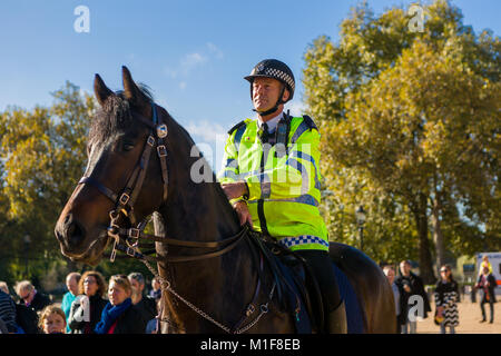 A Metropolitan policeman on horseback watches over a small crowd of people as they watch the Changing of the Guard - Stock Photo