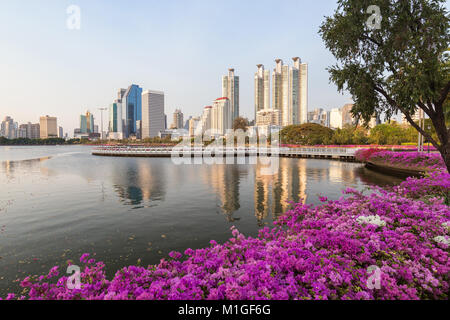 Blooming flowerbeds at the Benjakiti (Benjakitti) Park and modern skyscrapers in Bangkok, Thailand, in the morning. - Stock Photo