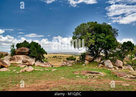 landscape of Serengeti National Park, UNESCO world heritage site, Tanzania, Africa - Stock Photo