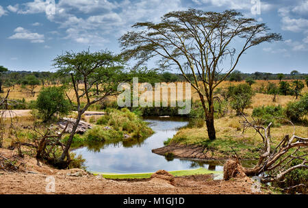 landscape in Serengeti National Park, UNESCO world heritage site, Tanzania, Africa - Stock Photo
