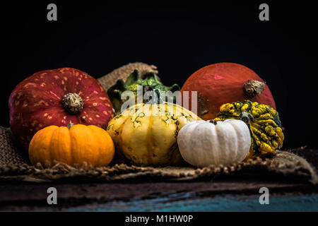 A selection of Autumn Squash on hessian - Stock Photo