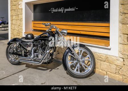 harley davidson sign motor bike leather jacket worn by biker gang stock photo royalty free. Black Bedroom Furniture Sets. Home Design Ideas