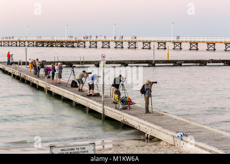 Busselton, Western Australia. 31st Janauary 2018. Photographers line up on the old jetty to photograph the Super - Stock Photo