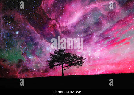 red alien landscape with alone tree silhouette over the night sky with many stars - elements of this image are furnished - Stock Photo