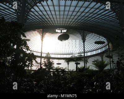 Inside Glasgow Botanic Gardens - Stock Photo