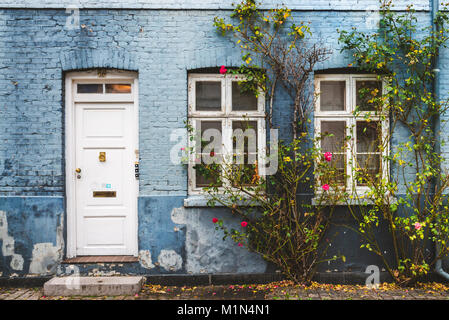 September, 23th, 2015 - city center autumn street in Copenhagen, Denmark. Blue house wall, white door and windows - Stock Photo