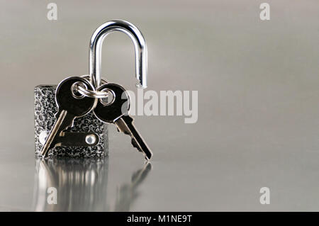Keys in the lock. Home security, protection - Stock Photo
