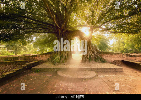 Wat Phra Ngam is an ancient temple in Ayutthaya Historical Park / thailand - Stock Photo