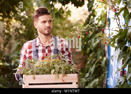 Man holding wooden crate with seedling - Stock Photo