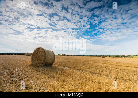 An image of a straw bale in a field shot near Melton Mowbray, Leicestershire, England, UK - Stock Photo