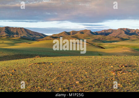 Hills and mountains, Bayandalai district, South Gobi province, Mongolia, Central Asia, Asia - Stock Photo
