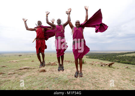 Masai warriors doing the traditional jump dance, Masai Mara Game Reserve, Kenya, East Africa, Africa - Stock Photo