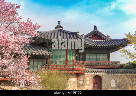 Spring Cherry Blossom at Changdeokgung Palace, Seoul, South Korea - Stock Photo