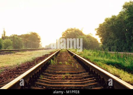 Beautiful landscape of railways among the small trees and golden sunset light - Stock Photo
