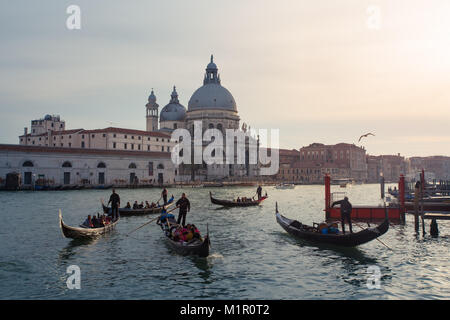 Gondolas in Grand Canal taking tourists on ride with Basilica di Santa Maria della Salute in the backgroundin Venice, - Stock Photo