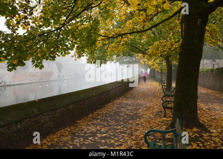 Female dressed in pink walking beside the tree-lined moat and Bishop's Palace on a foggy autumnal November morning, - Stock Photo