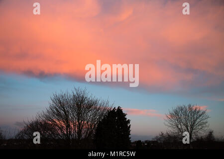 Kidderminster, UK. 1st February, 2018. UK weather: with the January blues now out of the way, amazingly pink early - Stock Photo