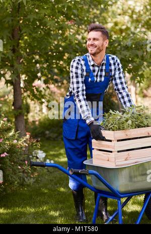 Cheerful gardener planting seedling - Stock Photo