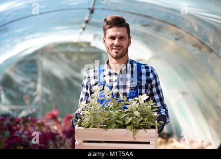Portrait of gardener holding wooden crate with seedling - Stock Photo