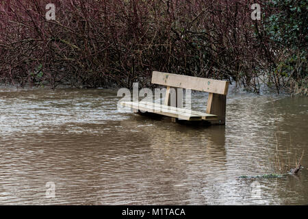 Submerged park bench at the edge of the River Suir after some heavy rain caused flooding. Cahir, Tipperary, Ireland. - Stock Photo
