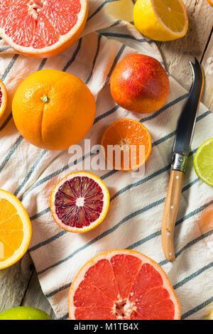 Assorted Raw Organic Citrus Fruit with Oranges Limes Lemons Grapefruit and Mandarins - Stock Photo