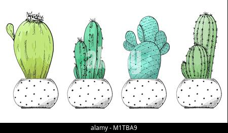 Sketch of succulents in pots. Stylized watercolor. Vector illustration. - Stock Photo