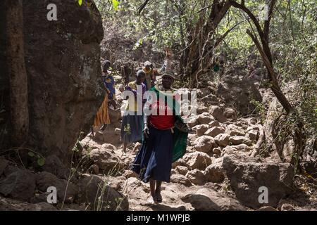 Karamoja, Uganda. 31st Jan, 2018. Pokot women walk through forest on the Kadam Mountains in Karamoja, northeastern - Stock Photo
