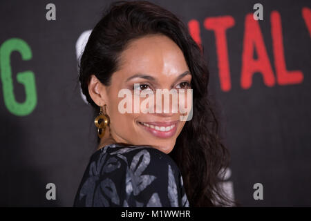 Los Angeles, USA. 02nd Feb, 2018. Actress Rosario Dawson honored with The Social Justice Filming In Italy Award - Stock Photo