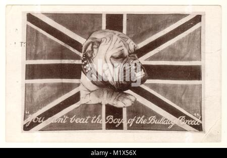 WW1 patriotic bulldog card 'You can't beat the boys of the bulldog breed', dated 3 Oct 1914, U.K. - Stock Photo