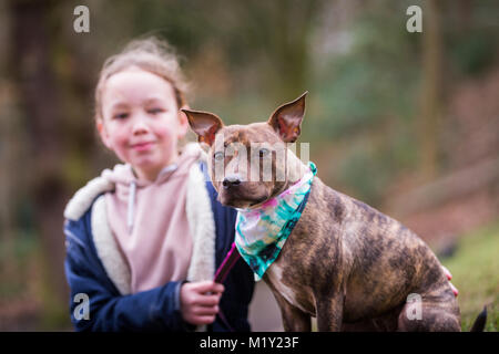Young girl with her pet staffordshire bull terrier dog in the park smiling - Stock Photo