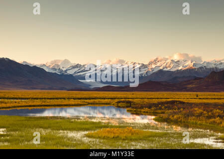Reflection of eastern Alaska Range bathed in alpineglow at sunset on pond in the Maclaren River Valley with the - Stock Photo