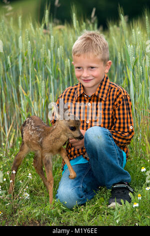 Hand rearing, boy sits with a tame fawn in a meadow, Styria, Austria - Stock Photo