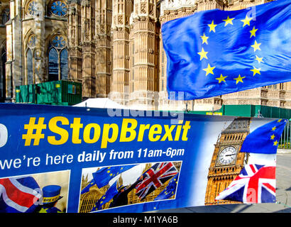 London, England, UK. Daily Anti-Brexit protest opposite the Houses of Parliament, organised by Steve Bray and others - Stock Photo