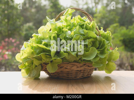 Raw fresh green vegetable in basket on table with nature background. - Stock Photo