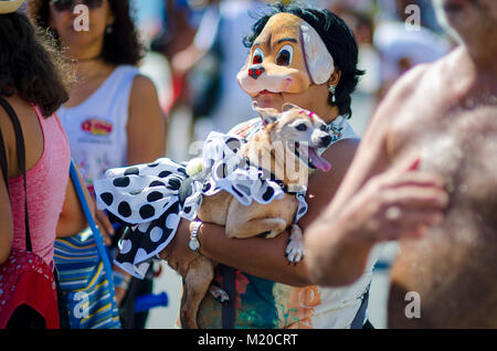 RIO DE JANEIRO - FEBRUARY 19, 2017: A  dog owner walks with her pet dressed up for Carnival at the annual Blocão - Stock Photo