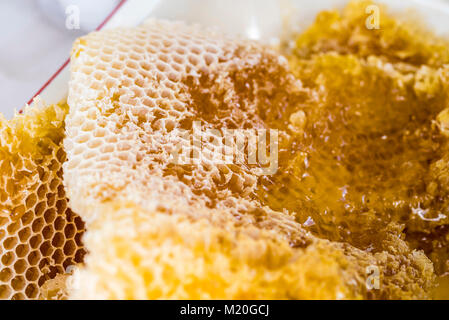 Natural Honeycomb with honey, macro, closeup, full frame. Comb honey, beeswax cells, unprocessed, golden yellow. - Stock Photo