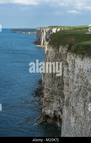 Scenic cliff-top coastal view from Bempton Cliffs RSPB reserve, of blue sky, North Sea & towering chalk headlands - Stock Photo
