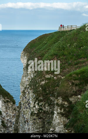 Cliff-top view of nesting seabirds for couple of people (birdwatchers) on viewing platform - Bempton Cliffs RSPB - Stock Photo