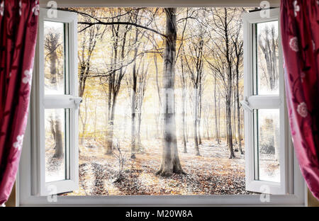 Whispering woodland viewed through an open window with red curtains during a cold autumn morning. Mist and fog slowly - Stock Photo