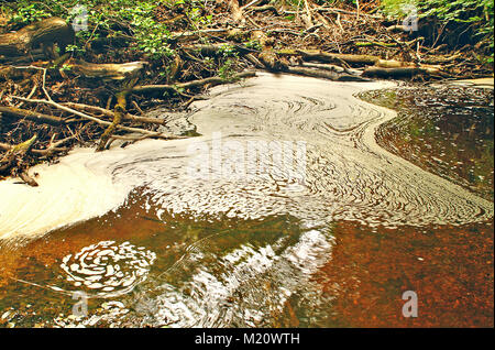 Foam patterns in a New Forest National Park, Hampshire England - Stock Photo