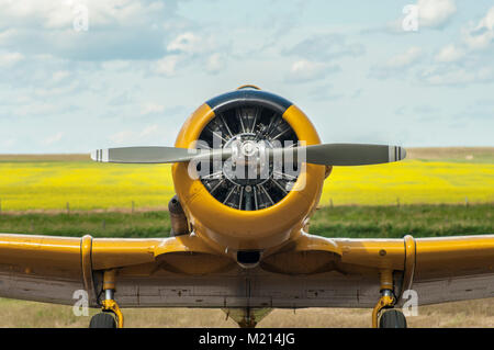 Front view of yellow single engine propeller airplane on the ground - Stock Photo
