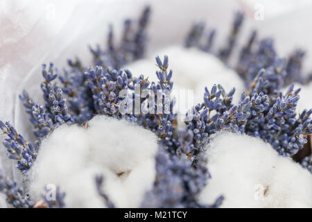 beautiful bouquet lavender and cotton, on table . dried flowers white and lilac color - Stock Photo