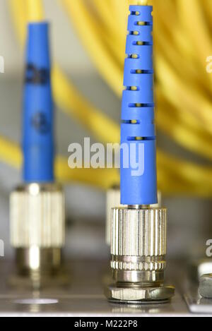 Optic fiber cables on distribution panel in data center - Stock Photo