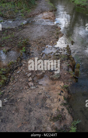 Broken flood defences of small river / large stream with seasonal winter flood water escaping through broken earthworks. - Stock Photo