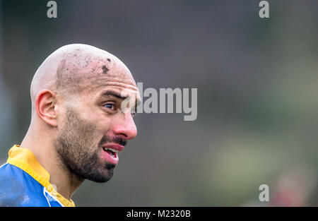 Head injury on a amateur rugby union player. Stock Photo