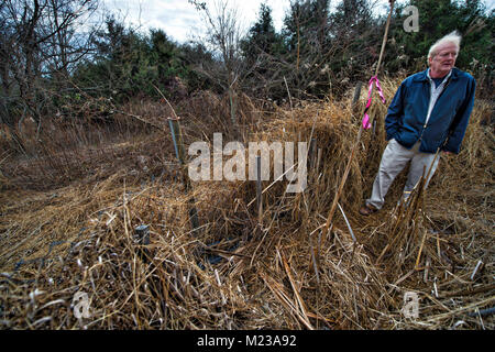 UNITED STATES: 2018: George Biller a resident of Historic Selma Estates stands in a drainage area that he says does - Stock Photo