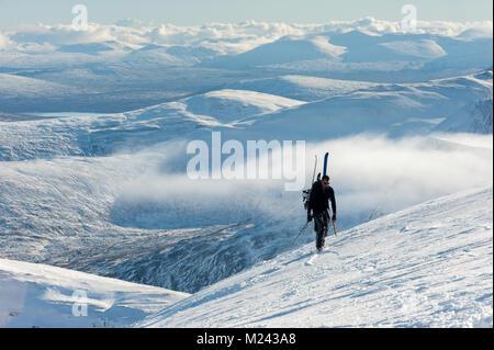 Back country skier summits Nevis range Scotland Credit: Kenny Ferguson/Alamy Live News - Stock Photo