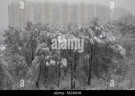 Moscow, Russia - February, 4, 2018: View of park on the outskirts of Moscow during abnormal snowfall in Moscow, - Stock Photo
